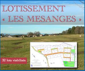 Lotissement Les Mésanges à Montfaucon